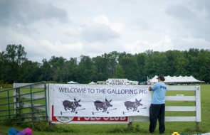 2015_Galloping Pig BT and TH logo-10